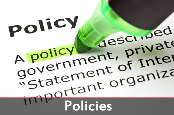 big_picture_policies