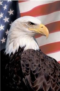 EagleDC